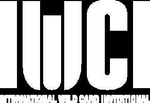 2016 IWCI